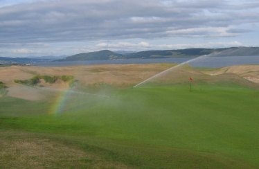 Castle Stuart (during grow-in)